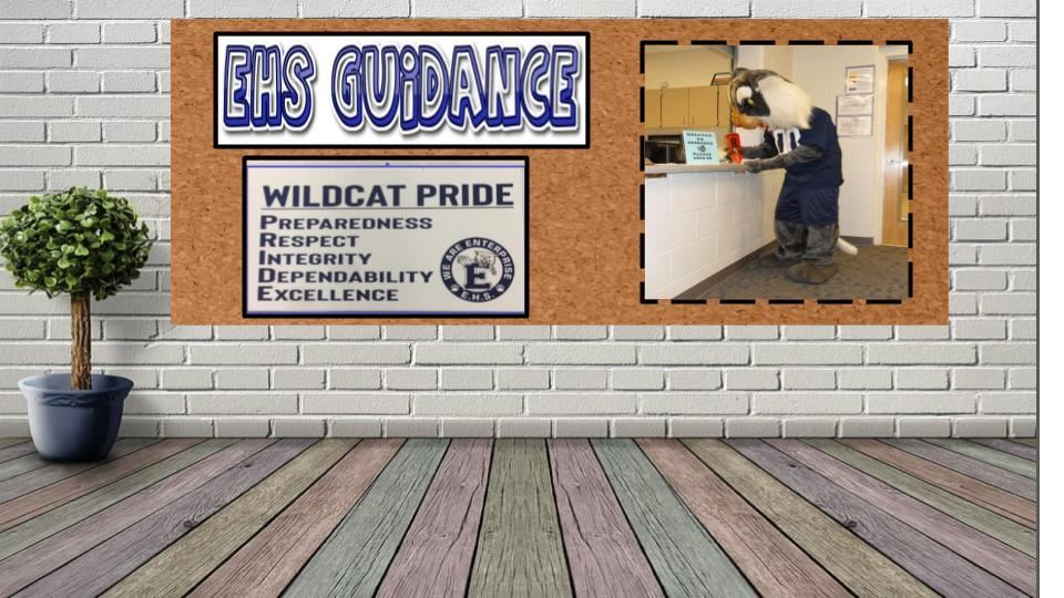 EHS Guidance